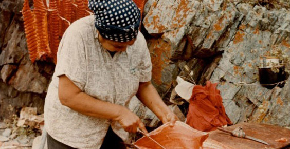 Salmon are filleted, then hung on racks to dry in hot summer winds that blow up the canyon in late summer. The Fraser canyon is uniquely suited to this type of wind drying, which preserves the meat for winter.