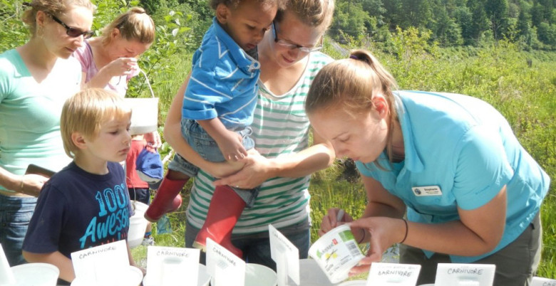 Hope Mountain Centre with Strong Start - Pond Ecology