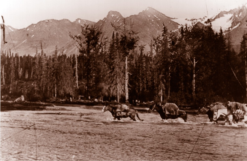 HBC brigades typically crossed these mountains during spring and fall. Horses had to contend with rugged terrain and turbulent river crossings.